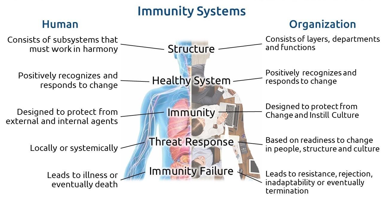 Human and Organizational Immunity Systems